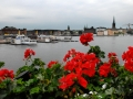 new site sweden--56